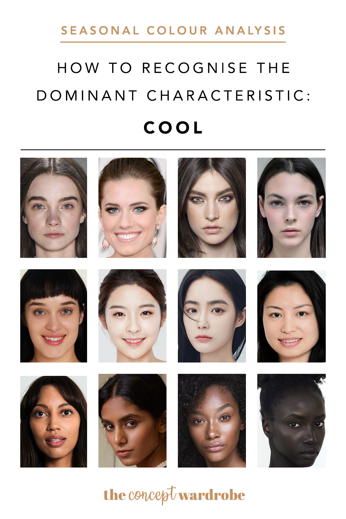 How To Recognise The Dominant Characteristic Cool Cold Skin Tone Yellow Skin Tone Skin Tone Makeup