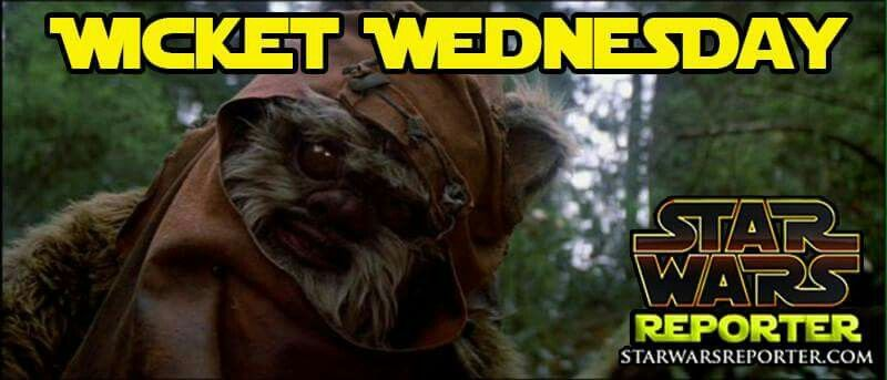 Wicket Wednesday Star Wars Star Wars Memes War Star Wars