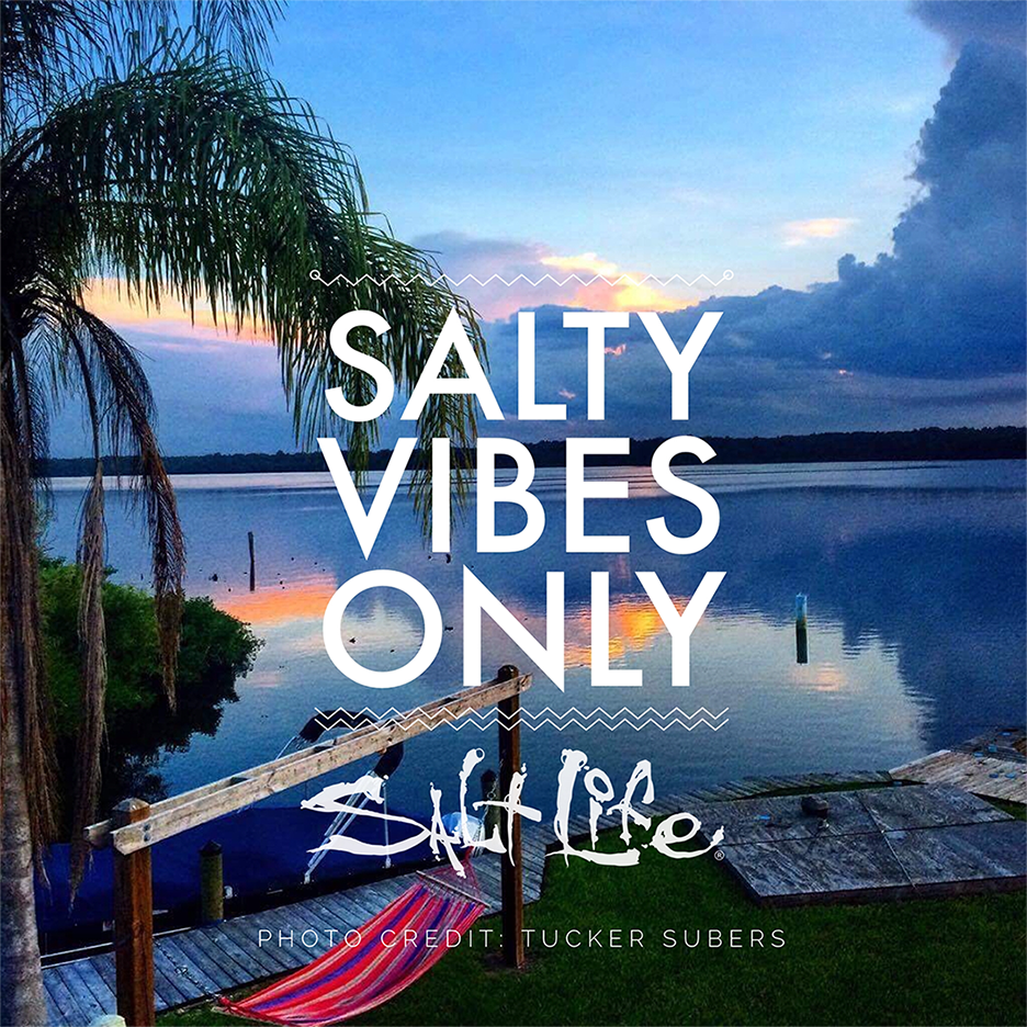 Salty vibesss   Beach captions, Beach quotes, Vacation ...