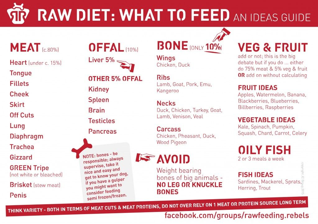 Raw Feeding Dogs Starter Guide With Images Raw Feeding For