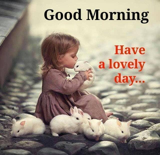 Good Morning Good Morning Quotes Good Morning Greetings Good Morning Happy Monday