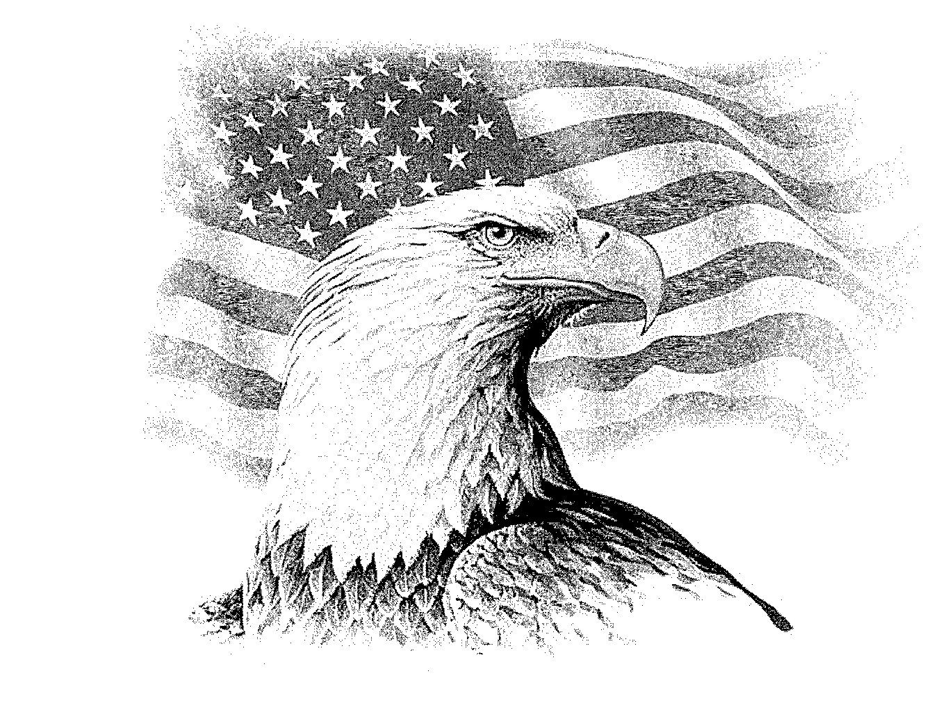 Patriotic eagle coloring pages - Eagle Drawings We Have Hundred Of Other Images From Which To Choose Please Contact