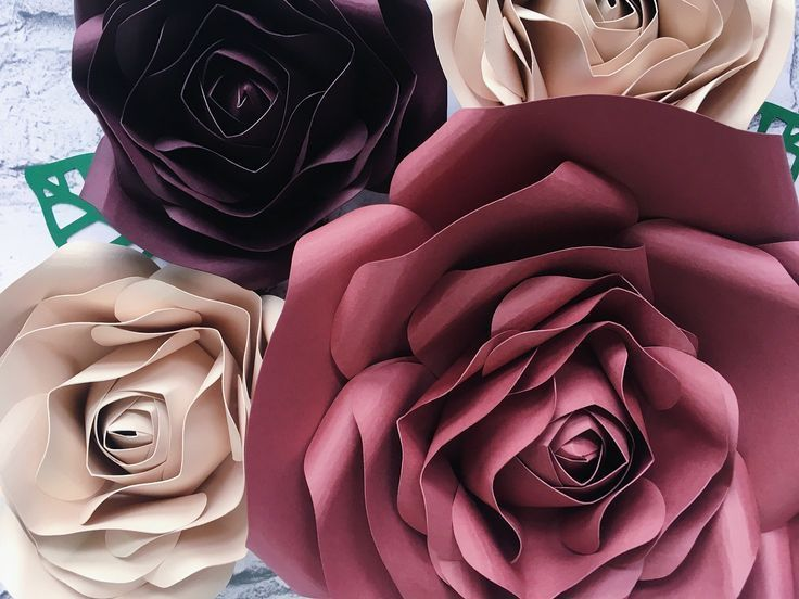 Giant Paper Flowers  fall wall decor #giantpaperflowers Giant Paper Flowers  fal...#decor #fal #fall #flowers #giant #giantpaperflowers #paper #wall #giantpaperflowers