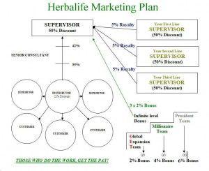 Herbalife-Marketing-Plan-300x245 | Herbalife    in 2019