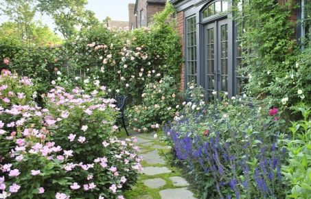 From Blah Lawn to Backyard Rose Garden Paradise | Lawn, Garden and ...