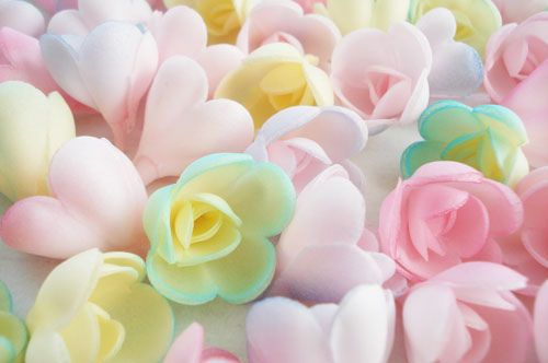 roses for cake decorating   Flickr - Photo Sharing!