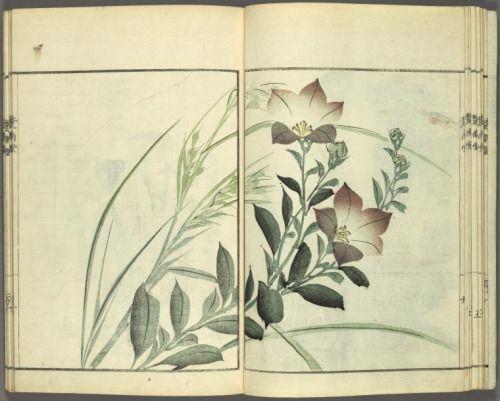 Page from The Sonan Album (1834) by Ônishi, Chin'nen (1792-1851).
