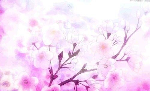 From Hinata Naru R@nD0m Pinterest Blossom trees - cherry blossom animated