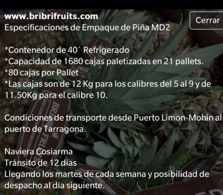 Especificaciones empaque de Piña MD2  Costa Rica Algeciras Tarragona www.bribrifruits.com Piñas ,pineapples ,ananas de Costa Rica ,frutas tropicales ,fruits ,mercabarna ,piñasdecostarica, mercamadrid@bribrifruitscostarica #piñas #pineapple #pineapples #ananas #frutastropicales #dieta #nutricion #salud #costarica #caribe #puravida #instanfood #piñasdecostarica #fruterias #mercados #mercamadrid #mercabarna #mercasevilla #spain #bribrifruits #disfrutadelapiña