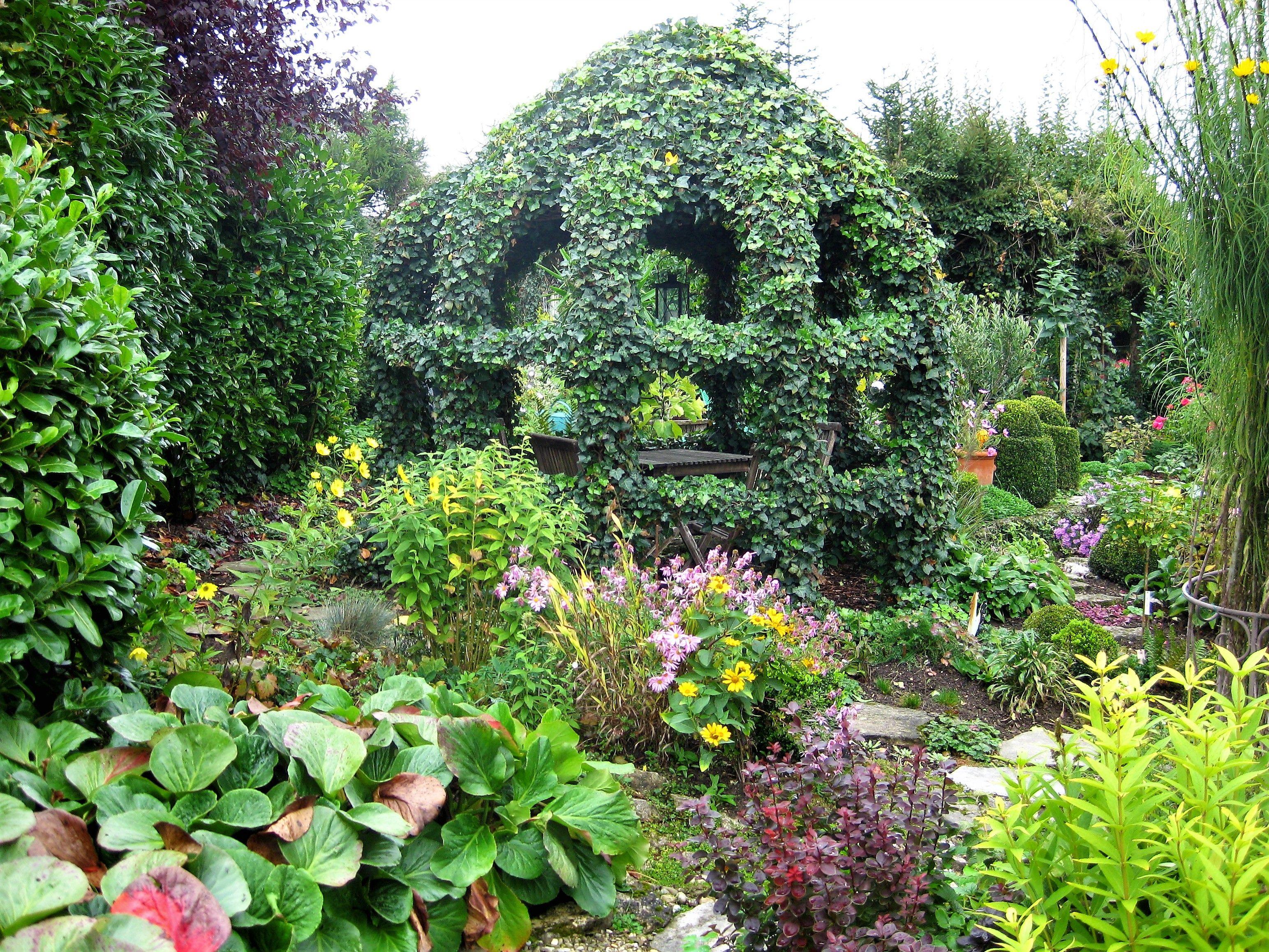Unser Gartenpavillon Mit Efeu Pflegeleichter Garten Garten