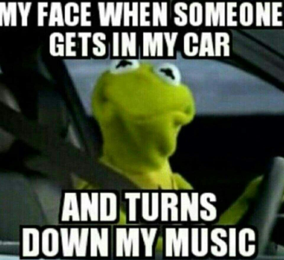 Pin On Kermit The Frog Memes