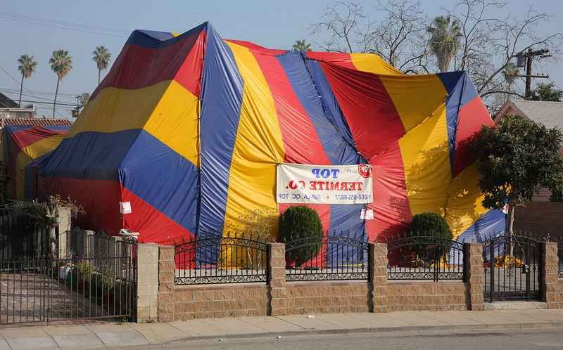 Does Homeowners Insurance Cover Termite Tenting House Tent
