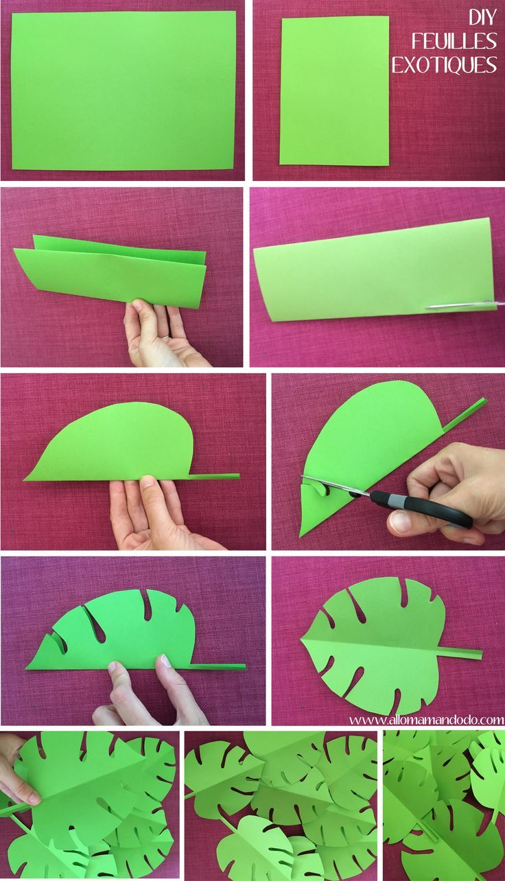 DIY Exotic Leaf Folding Vaiana – Beliebt Bilder