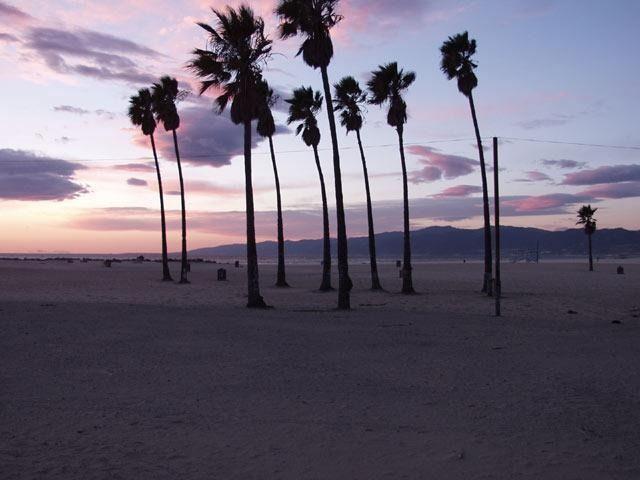 Destinations Venice Beach