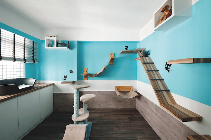 18 Amazing Cat Room Designs For Your Inspiration CATS KITTENS