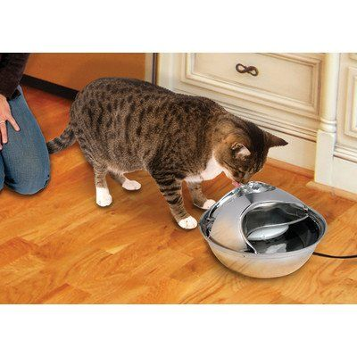 Pioneer Pet 6023 Stainless Steel Raindrop Pet Drinking Fountain