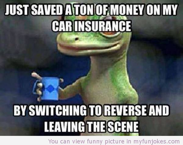 Funny Car Insurance Meme Usa Jokes Fun Quotes Funny Funny Quotes Just For Laughs