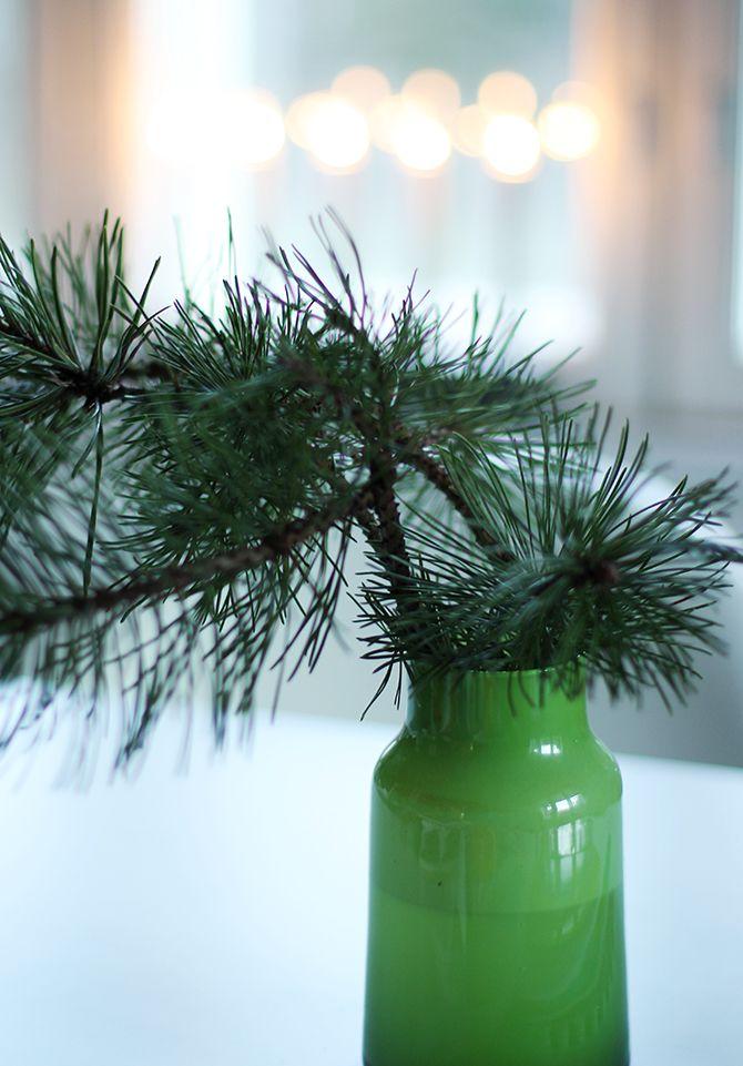 Green Glass Vase | Pine Branch Arrangement