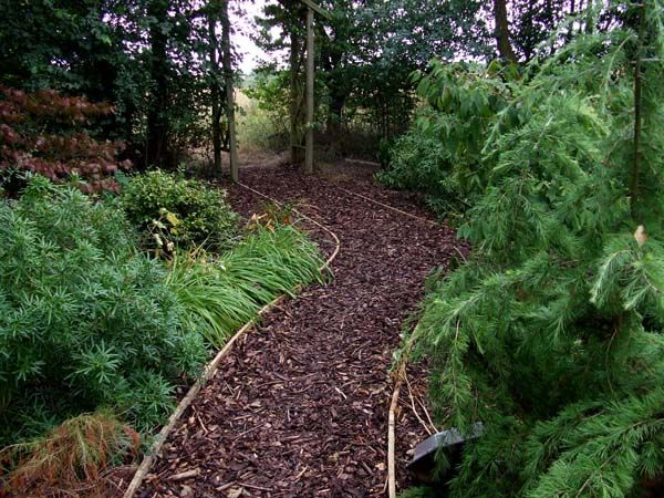 bark paths Google Search Gardening and Landscaping Pinterest
