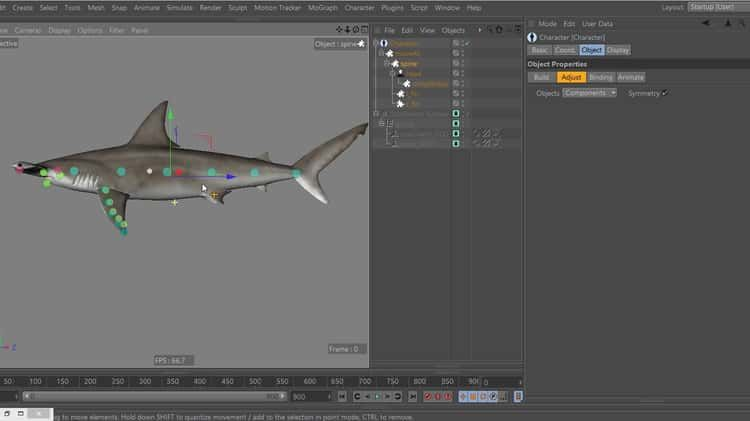 c4d custom Character rig template overview and tutorial | c4d ...