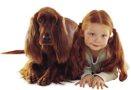 Dog and Children Look-a-Likes