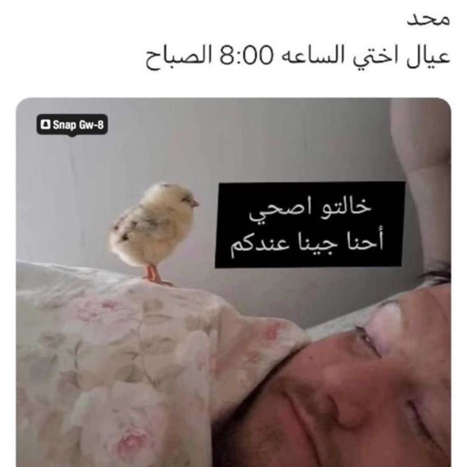 Pin By Selenator On Fun تسلية Funny Baby Quotes Arabic Funny Dora Funny