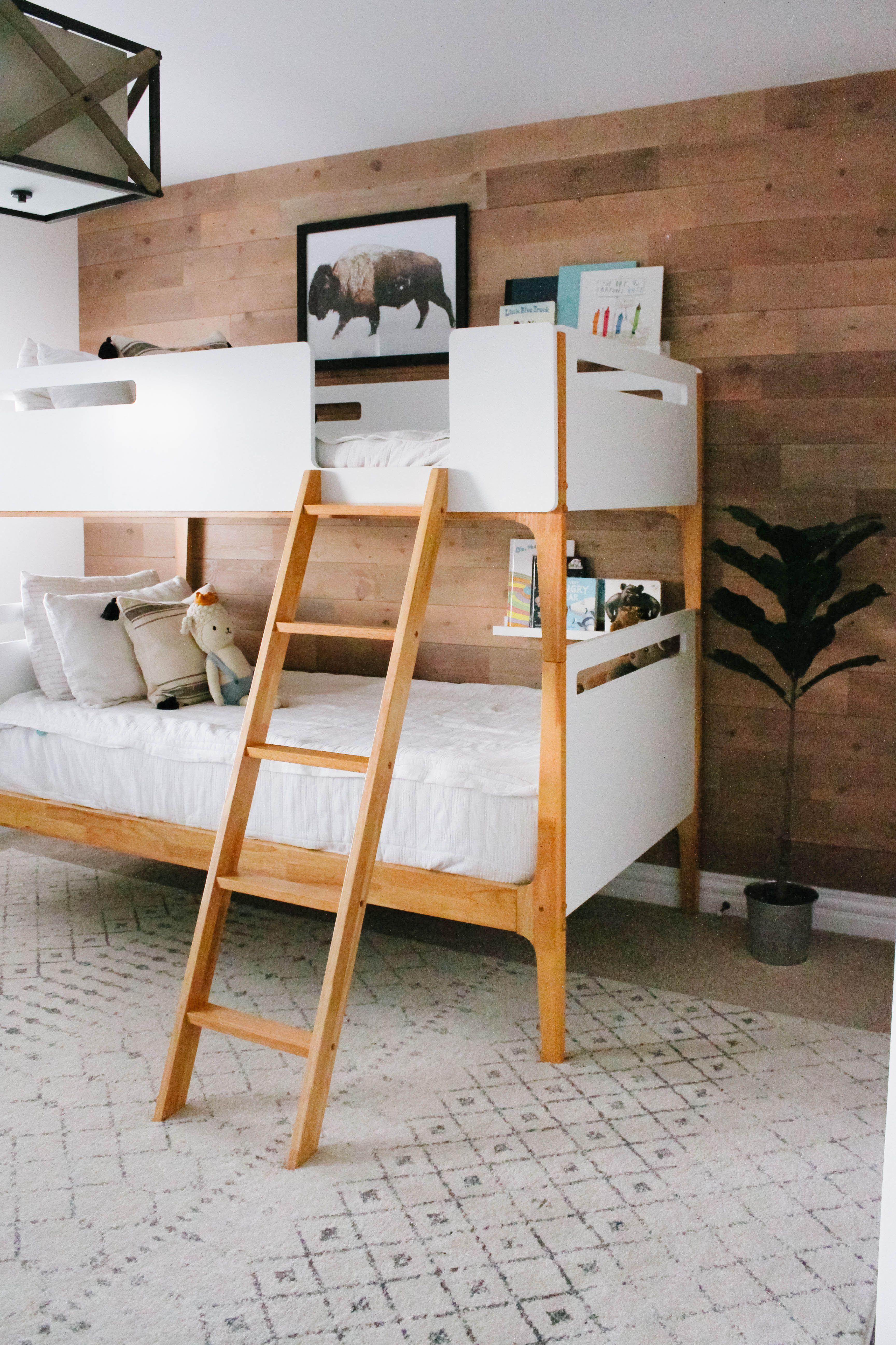 Bebble Modern Bunk Beds Modern Bunk Beds Boys Shared Bedroom Shared Bedroom