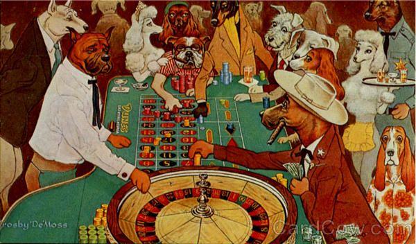 Gambling on dogs the casino web lottery