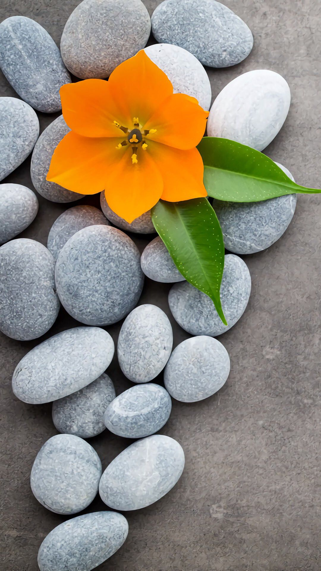Stone And Flower Love Wallpaper Backgrounds Beautiful