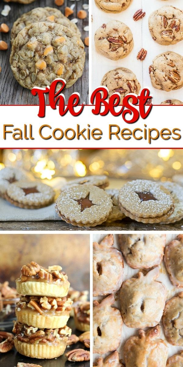 25 Fall Cookies That You'll Be Craving All Year Fall Cookies - These fall cookie recipes are perfect for your fall parties! From pumpkin cookies to apple pie cookies, there are fun cookie twists on all your favorite dessert recipes!