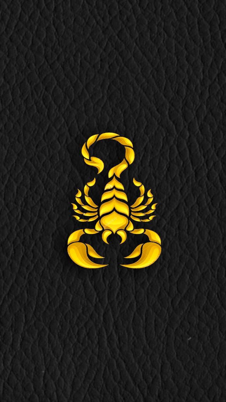 scorpion logo quotes - photo #36
