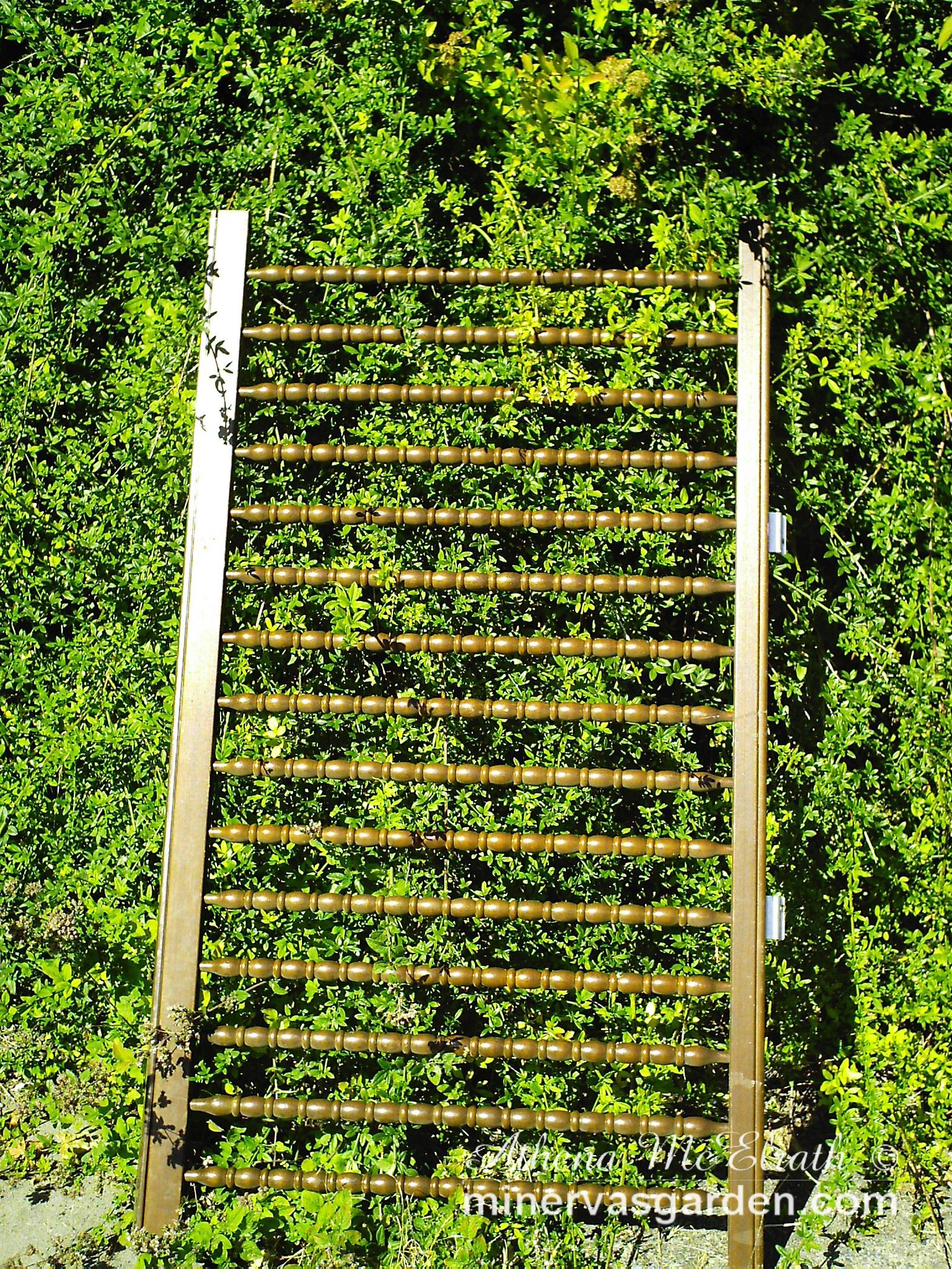 Diy Garden Trellis Ideas Part - 15: Minervau0027s Garden: Crib To Garden Trellis DIY Tutotial
