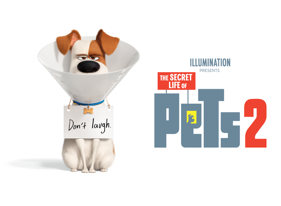 Secret Life Of Pets 2 New Trailer Will Leave You Excited For It S Summer 2019 Release Secret Life Of Pets Secret Life New Trailers