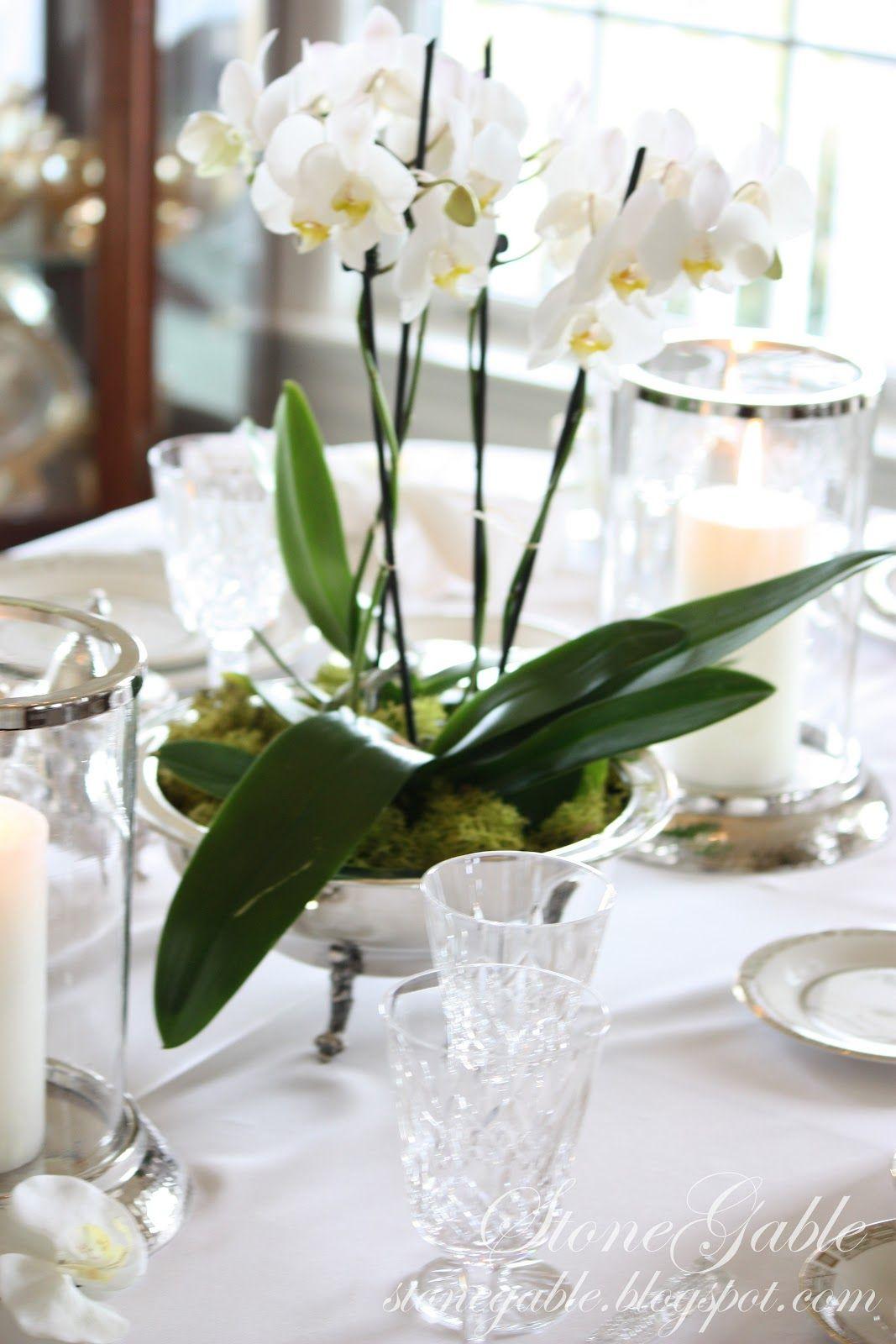 Plantas vivas , flores e temperos na decoração de casamento ...