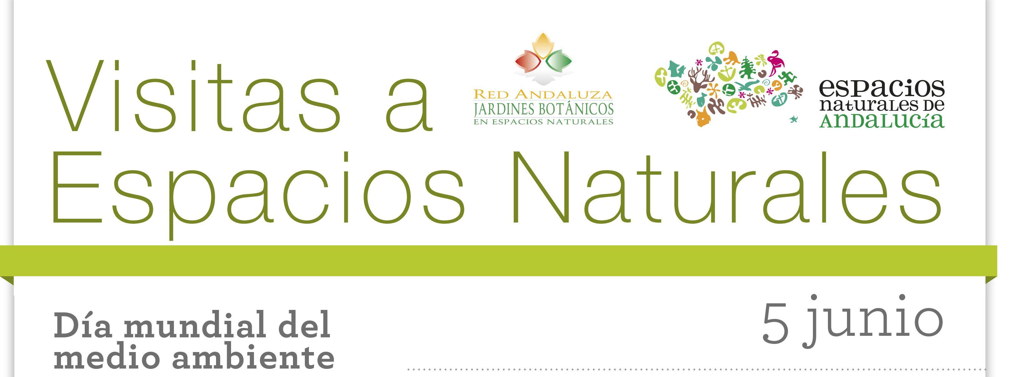 Actividades propuestas por el Día Mundial del Medio Ambiente en los espacios naturales protegidos de Andalucía. Consulta el cartel, cada actividad contiene un enlace a su ficha descriptiva, en la que se detallan los datos de contacto para ampliar información y reservas. Puedes consultar la oferta completa de actividades  en: www.reservatuvisita.es #actividades #espaciosnaturales