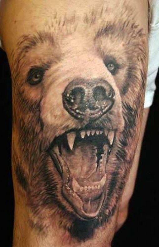 Hairy Bear  Amazing 3D Tattoos