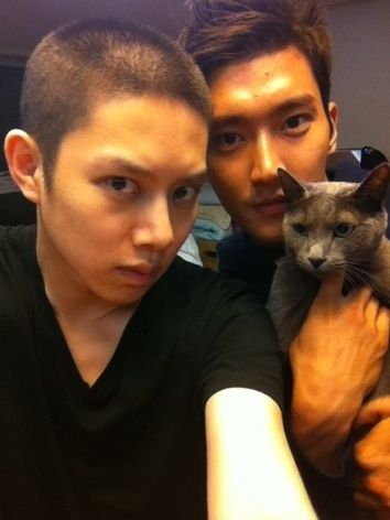 20 Adorable K-drama actors playing with kitties