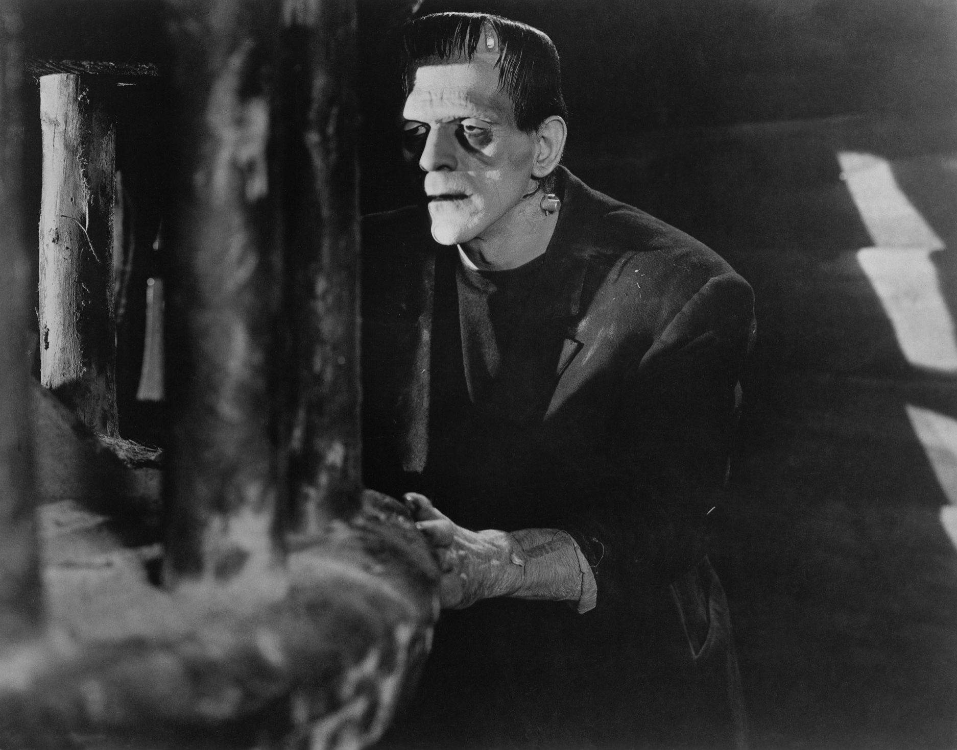 frankenstein social isolation Mother teresa once said, the most terrible poverty is loneliness, and the feeling of being unloved mary shelley's frankenstein touches on some key issues surrounding loneliness and abandonment.