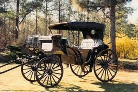 A carriage was the only other means except walking of getting from one place to another.  They play a large role in society, and in the book.  References to a carriages (many different kinds) are made throughout the book.