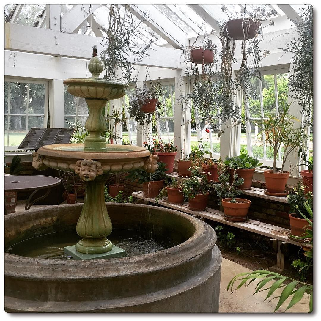 Just relax and breathe greenhouse plantlife fountain