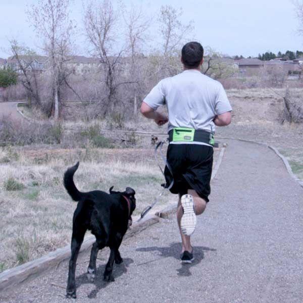 Outward Hound Hands Free Leash Dog Travel Dog Walking Pets