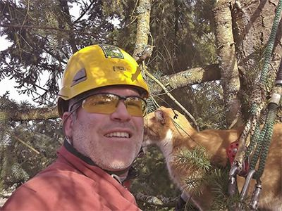 friends to cats in high places canopy cat rescue team saves
