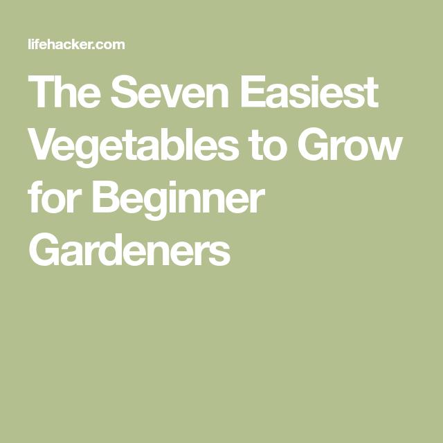 The Easiest Vegetables To Grow For Beginner Gardeners 400 x 300