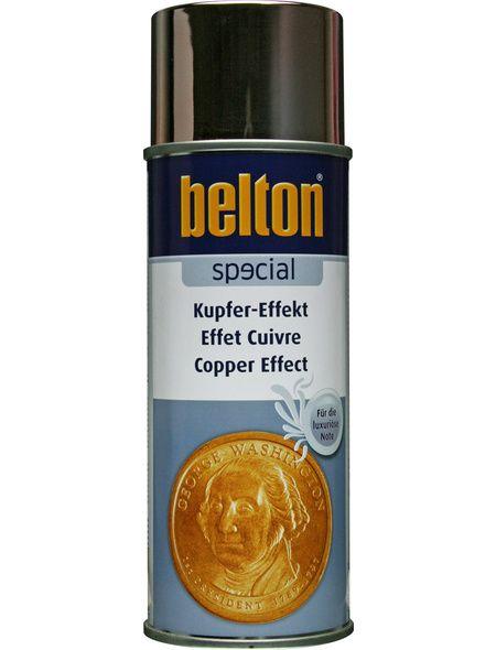 Hagebau 10 49 Eur Belton Spruhlack Belton Special Kupfereffekt