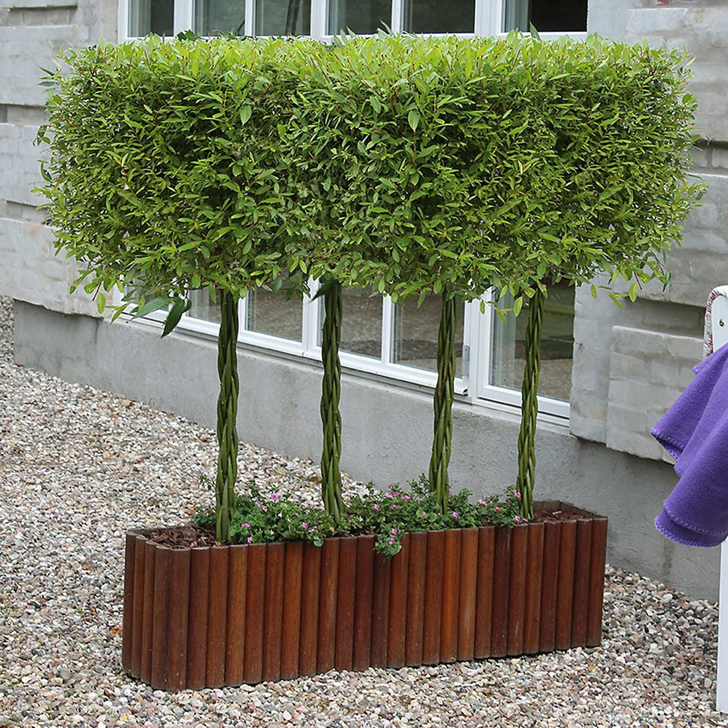 Woven Willow  Planter Baske  1m x 1m   PACK of  2 Woven Willow Raised Bed