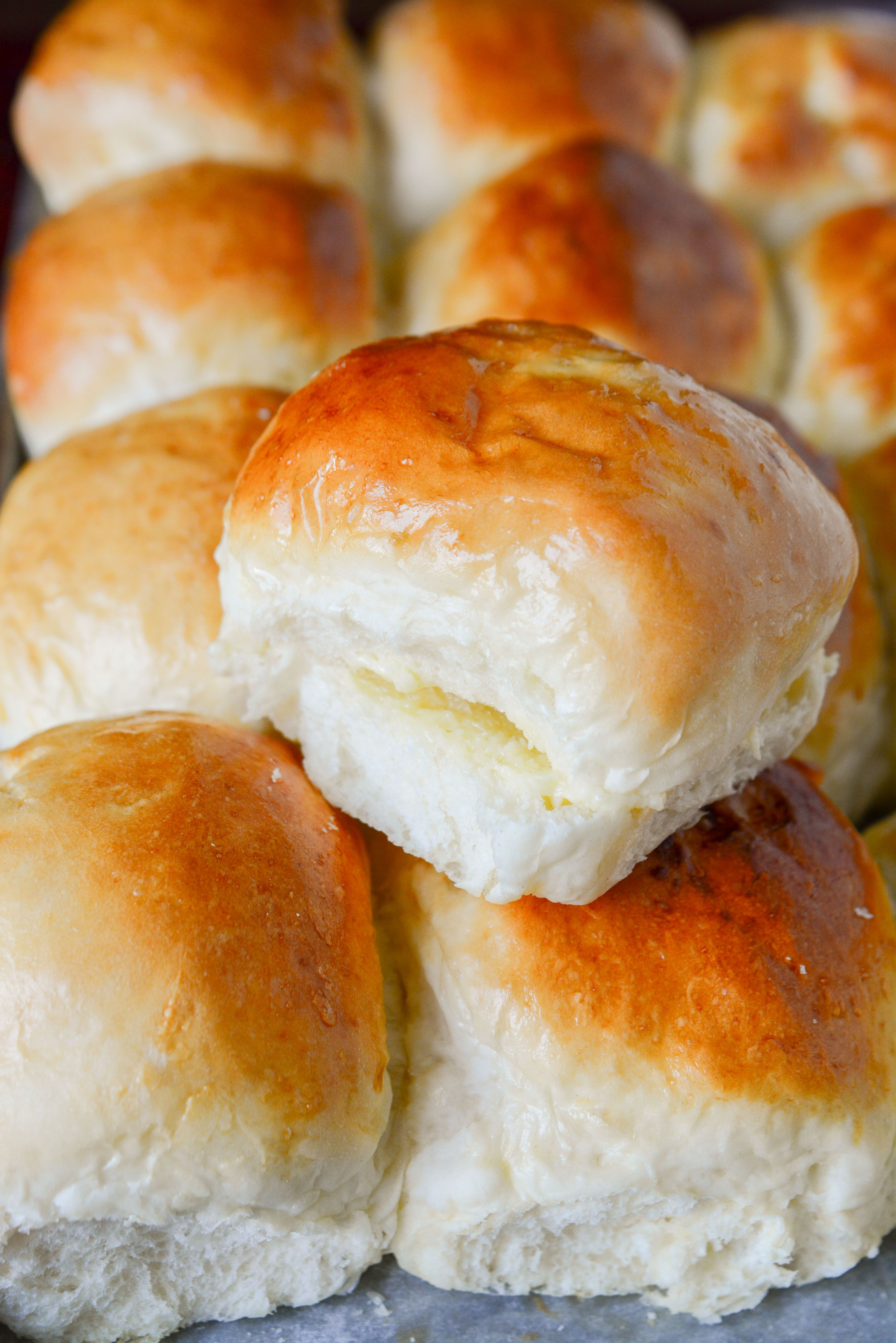 The Ultimate Dinner Rolls No Mixer Needed Recipe Dinner