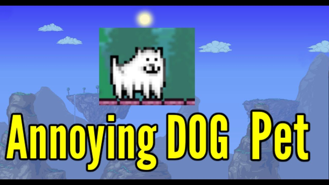 Annoying Dog From Undertale Terraria 1 3 5 Calamity Mod Pet
