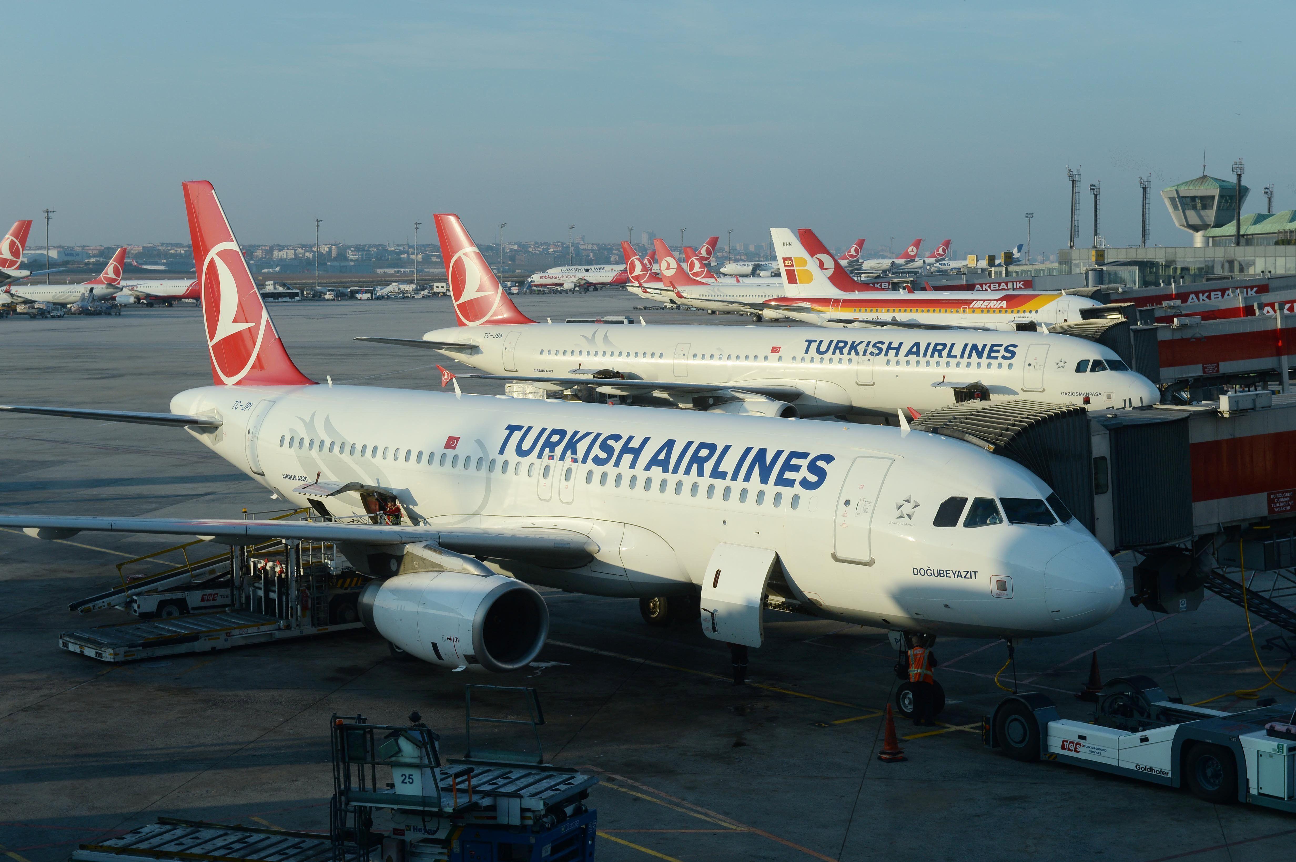 Turkish Airlines Flughafen, Luftfahrt und Bundespolizei