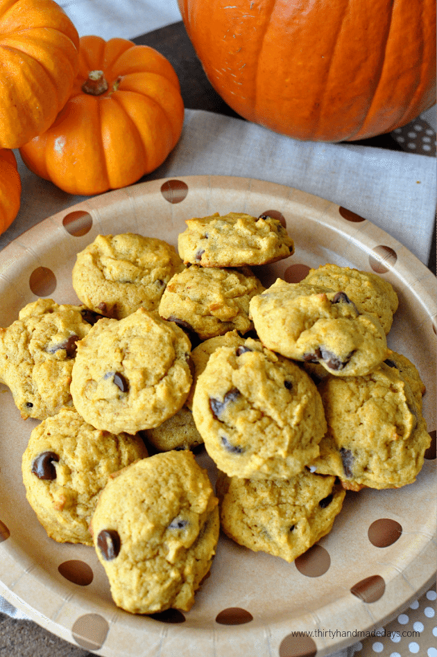 The very  best Old Fashioned Chocolate Chip Pumpkin Cookies from www.thirtyhandmadedays.com