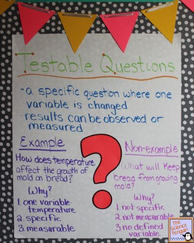 Science Physics Methods: Testable Questions For The Scientific Method Anchor Chart